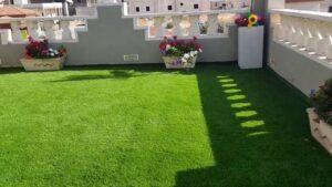 تنسيق حدائق ابو ظبى