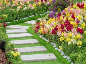 تصميم و تنفيذ حدائق ام القيوين